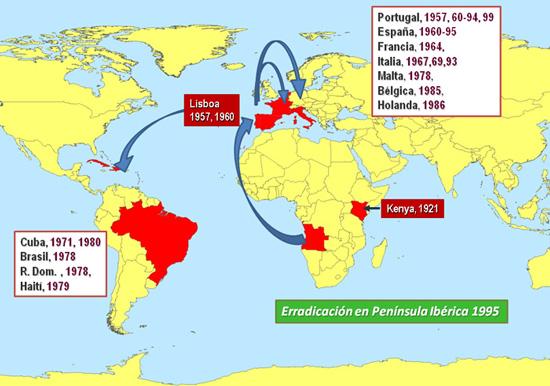 African Swine Fever (ASF)
